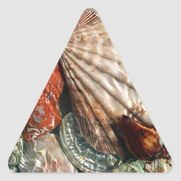 Beach Themed Seashells Triangle Sticker