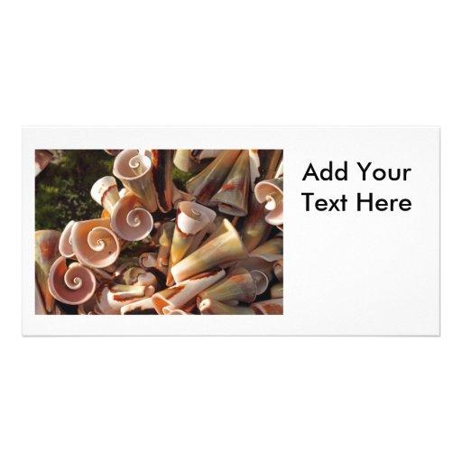 Seashells tropicales tarjetas fotográficas personalizadas