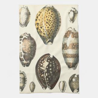 Seashells únicamente formados toalla