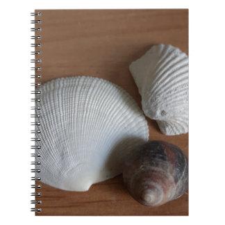 Seashells Wooden Coastal Rustic Look Decor Notebook