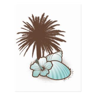 Seashells y azul del palmtree 3 postales