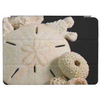 Seashells y dólar de arena blancos cover de iPad air