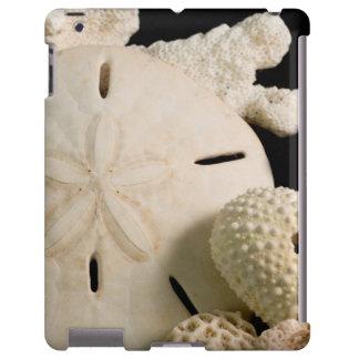 Seashells y dólar de arena blancos funda para iPad