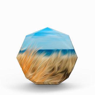 Seashore Acrylic Award