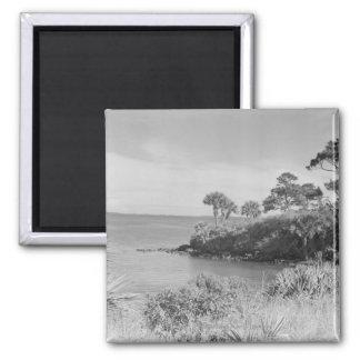 Seashore Magnet