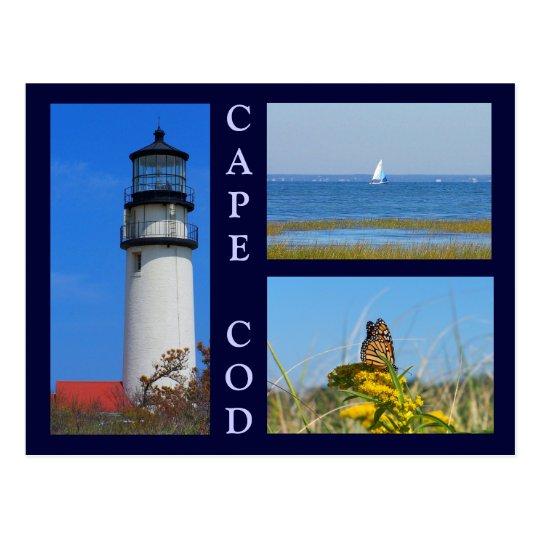 Seashore Scenes Postcard
