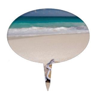 SEASIDE BEACH FLIPFLOPS HAT VACATION OCEAN  blue f Cake Toppers