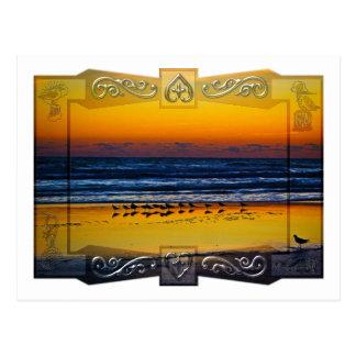 Seaside Birds Soaking in Orange Light at Waters Ed Post Card