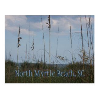 Seaside Dreams - North Myrtle Beach, SC Postcard