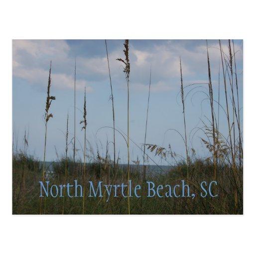Seaside North Myrtle Beach Sc