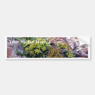 Seaside Flower Car Bumper Sticker