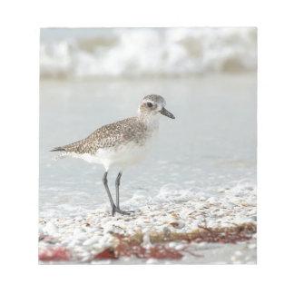 Seaside Plover Notepad