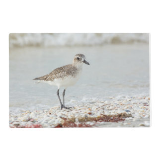 Seaside Plover Placemat