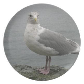 Seaside Seagull Melamine Plate