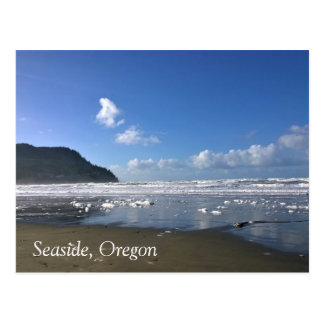 Seaside Shore in Winter Postcard