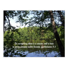 Season Ecclesiastes Lake Forest Postcard at Zazzle