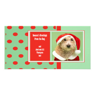 Season s Greetings From the Dog Photo Greeting Card