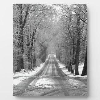 Season - Winter.jpg Plaque