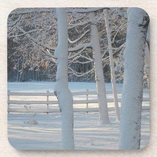 Seasonal Coaster