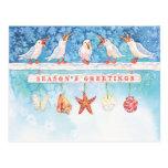Seasonal Seagulls Postcards