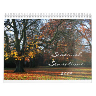 Seasonal Sensations 2009 Calendar