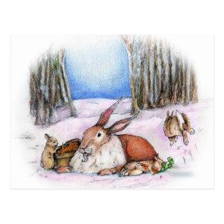 Season's Bunny Postcard