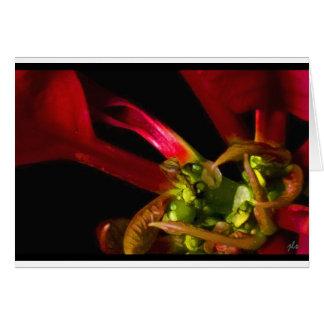 seasons:  flora series [autumn] notecard