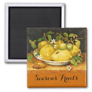 SEASON'S FRUITS LEMONS AND WHITE FLOWERS MAGNET