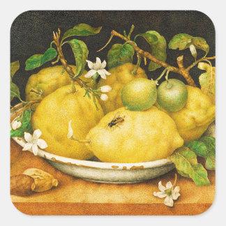 SEASON'S FRUITS LEMONS AND WHITE FLOWERS SQUARE STICKER