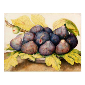 SEASON'S FRUITS / PLATE WITH FIGS AND GREEN LEAVES POSTCARD