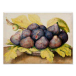 SEASON'S FRUITS / PLATE WITH FIGS AND GREEN LEAVES POSTER