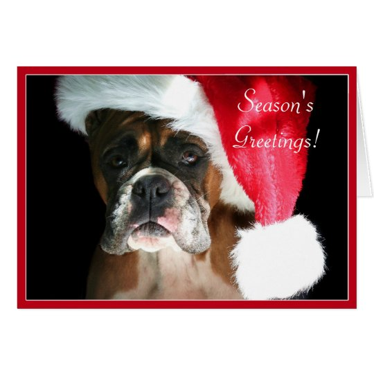 Season's Greetings Boxer dog greeting card