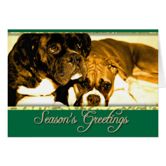 Season's greetings Boxer dogs card