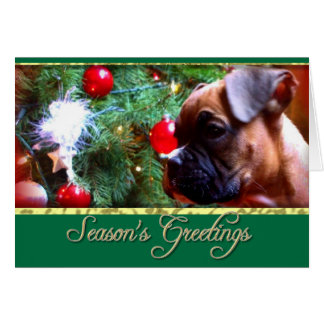 Season's greetings Boxer puppy card