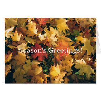 Season's Greetings! Card