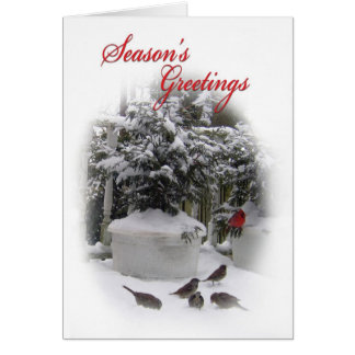 Season's Greetings card with red Cardinal.