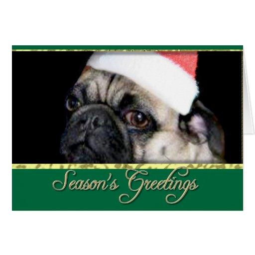 Season's Greetings Christmas pug dog card