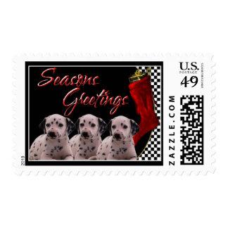 Seasons Greetings - Dalmatian Puppies dog Postage Stamps