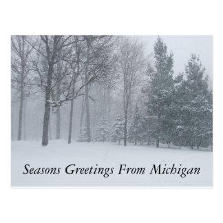 Seasons Greetings from Michigan Winter Snow Postca Postcard