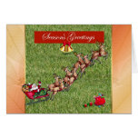 Season's Greetings gardener lawn care landscape Card
