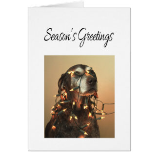 Season's Greetings german shorthaired pointer Stationery Note Card