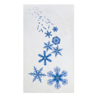 Seasons Greetings Gift Tags Double-Sided Standard Business Cards (Pack Of 100)