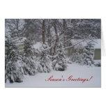 Season's Greetings! Greeting Cards