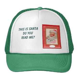 Seasons Greetings Hat