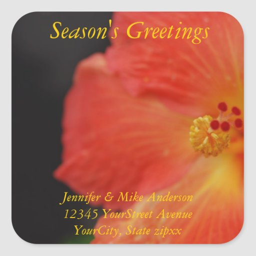 Season's Greetings HIbiscus with return address Square Sticker