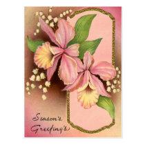 Seasons Greetings Orchids Postcard