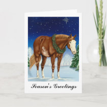 Season's Greetings Overo Paint Horse Holiday Card