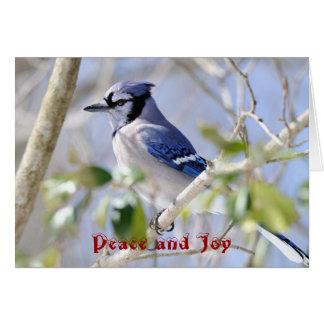 Seasons Greetings, Peace and Joy Card