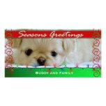 Seasons Greetings Personalized Dog photo card