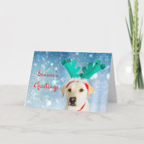 Season's Greetings Pet Labrador Dog Cute Festive Holiday Card